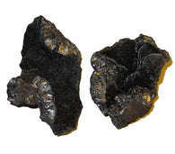 Coal Cluster 01 Set of 2 Silver Black Crystals Good Luck Energy Stone Minerals 2.7