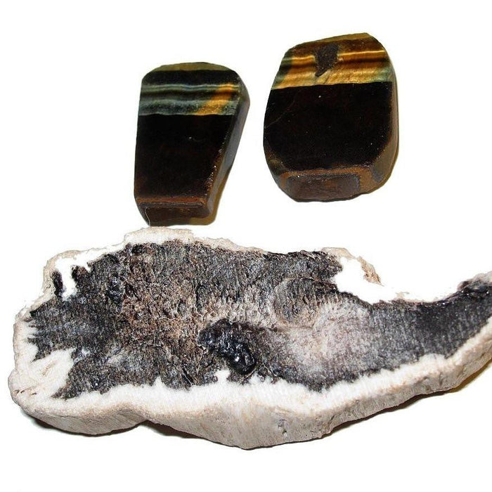 Crystal Healing Earth Energy Set Petrified Wood, Tigers, Hawks Eye Stones