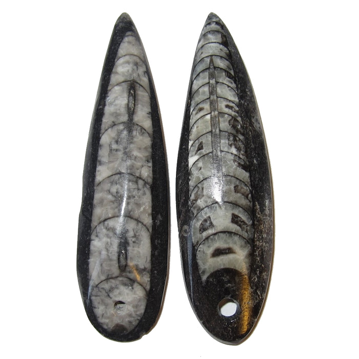 Fossil Amulet Premium Pair of Mini Wand Bead Pendants for Past Life Journeys P02, 2 inch