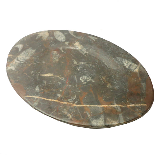 Fossil Dish Oval Black Orthoceras Stone Entertaining Platter (10 Inches)