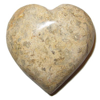 Fossil Heart 01 Brown Crystal Healing Stone Eternal Soul Mates Carving Love Gem 3