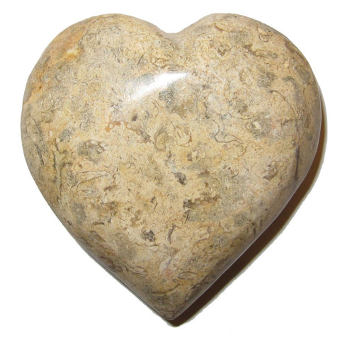 Fossil Heart 01 Brown Crystal Healing Stone Eternal Soul Mates Carving Love Gem 3""