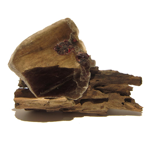 Garnet Mineral 07z - Red Almandine Brown Mica Thin Slice
