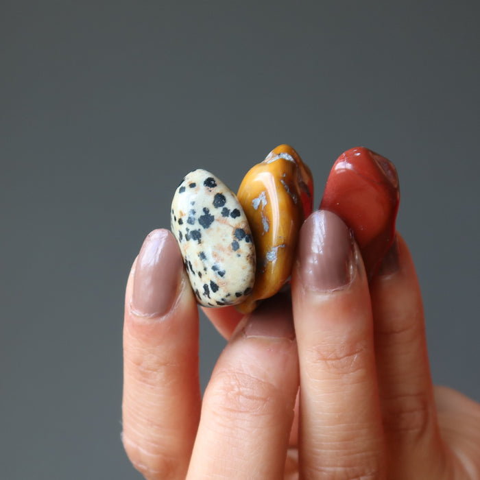 hand holding yellow, red, and dalmatian jasper tumbled stones
