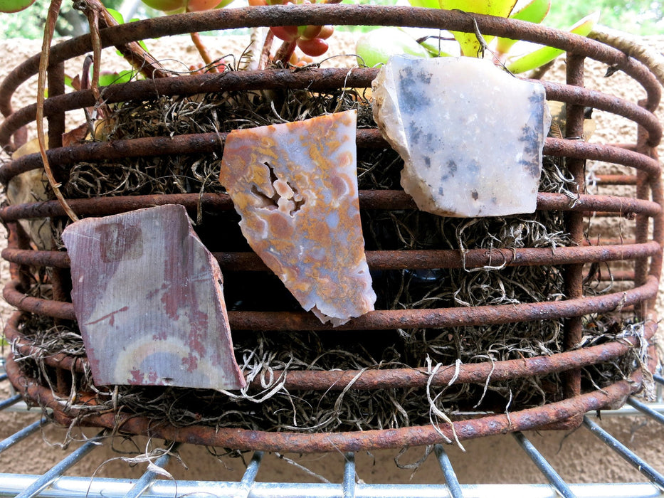 Magnet Set 06 Plume Agate Red Creek Jasper - I Dig Crystals