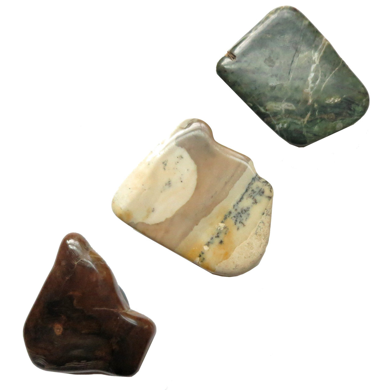 Magnet Set 07 Petrified Wood Picture Jasper - I Dig Crystals