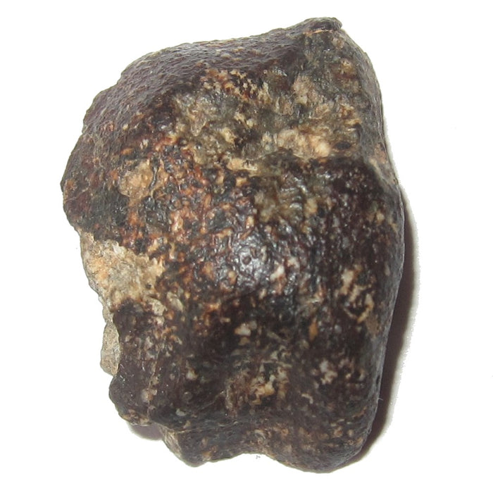 Eucrite Meteorite Collectible Space Stone of Goddess Vesta Asteroid Belt in Suspension Display Box C50 (Midnight Stars 22mm)