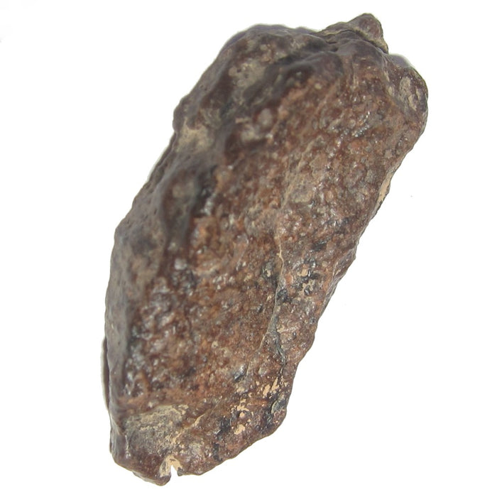 "Meteorite NWA L Chondrite Collectible Mind Expansion Asteroid Belt Origin Space Rock in Suspension Box Display C50 (Manifestation 1.5"")"