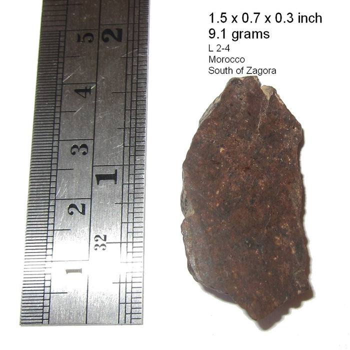 "NWA L Chondrite Meteorite Collectible Mind Expansion Asteroid Belt Origin Space Rock in Suspension Box Display C50 (Manifestation 1.5"")"