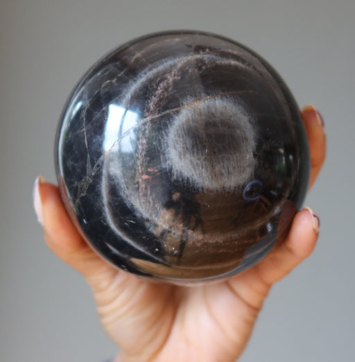 hand holding black moonstone sphere with bullseye formation
