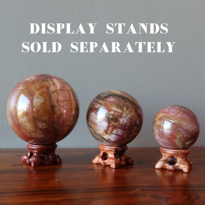 three petrified wood spheres on fancy wood display stands