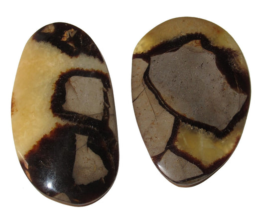 "Septarian Polished Stone 2.3"" Collectible Pair of Yellow Brown Potato Chip Crystals Spiritual Joy Mineral Rare Shape Gem C02"