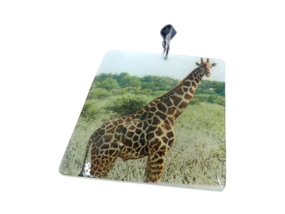 Shell Jewelry Set Specialty One-of-Kind Animal Matching Square Picture Safari Giraffe S01