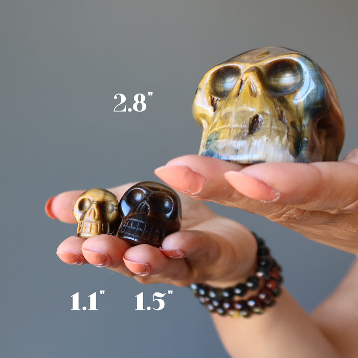 hands holding 3 brown tigers eye skulls