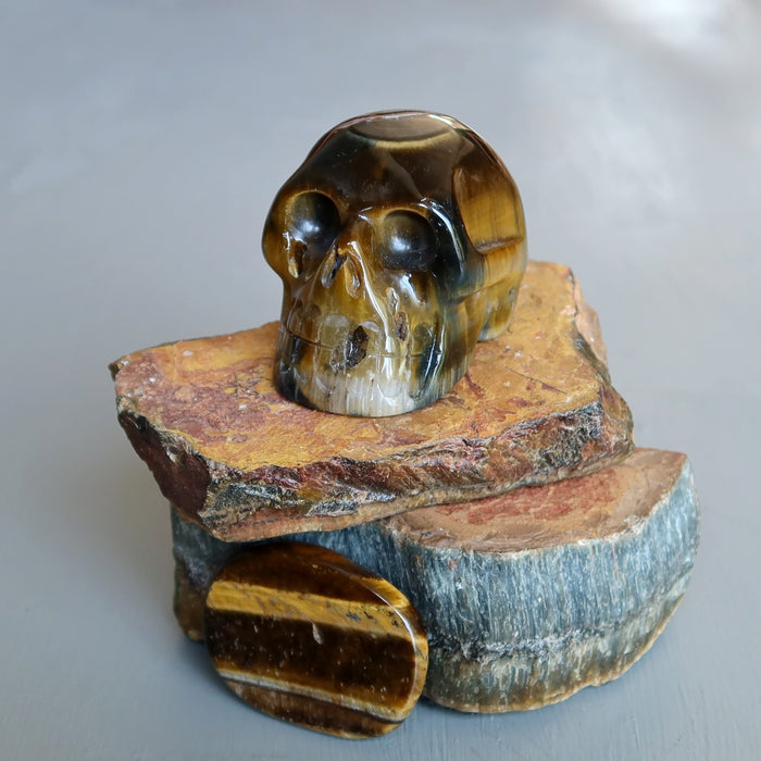 brown tigers eye skull on raw tigers eye slabs