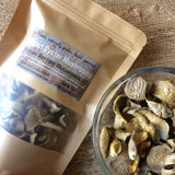 dried oyster mushrooms, Taylors, SC, Rocky Bottom Mushrooms