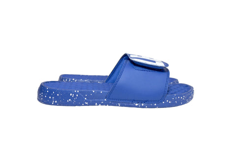 Leaders Blue Slides