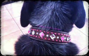 Blinged Dog Collar -  Custom Order