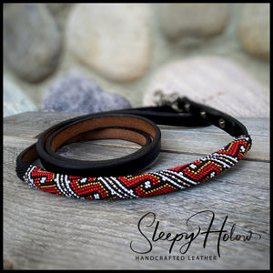 Leather Leash - Matching Rolled Leather Collar