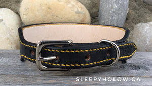 Custom Leather Carved Dog Collar