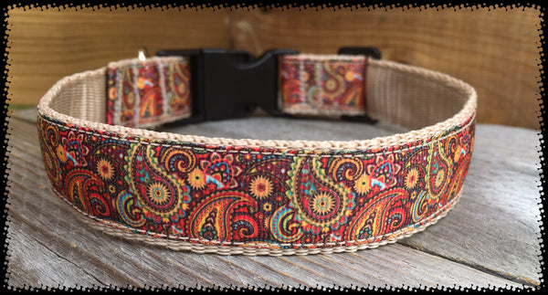 Brad Paisley Dog Collar