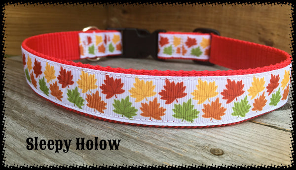 Fall Maple Leaf Dog Collr