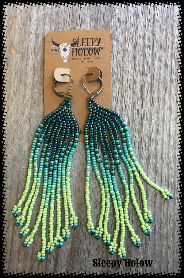 Gradient Fringe Earrings