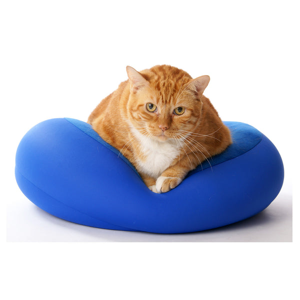 Microbead Pet Pillow for Small Dogs and Cats by Squishy Deluxe (Size: 16x16x4 inches)