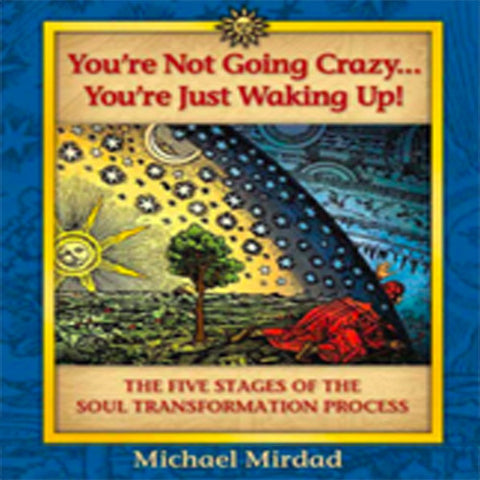 You're Not Going Crazy... You're Just Waking Up Book