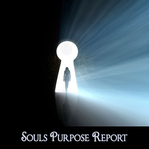 Souls Purpose Report