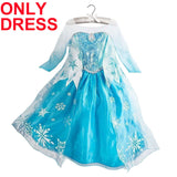 Elsa dress girls Dress Custom anna Cosplay Dress kid fantasia