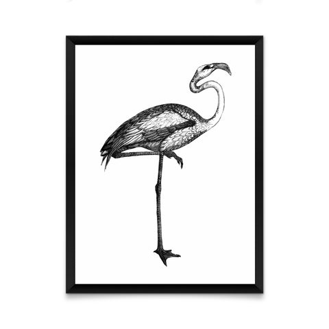 Black and white bird print/ wall art