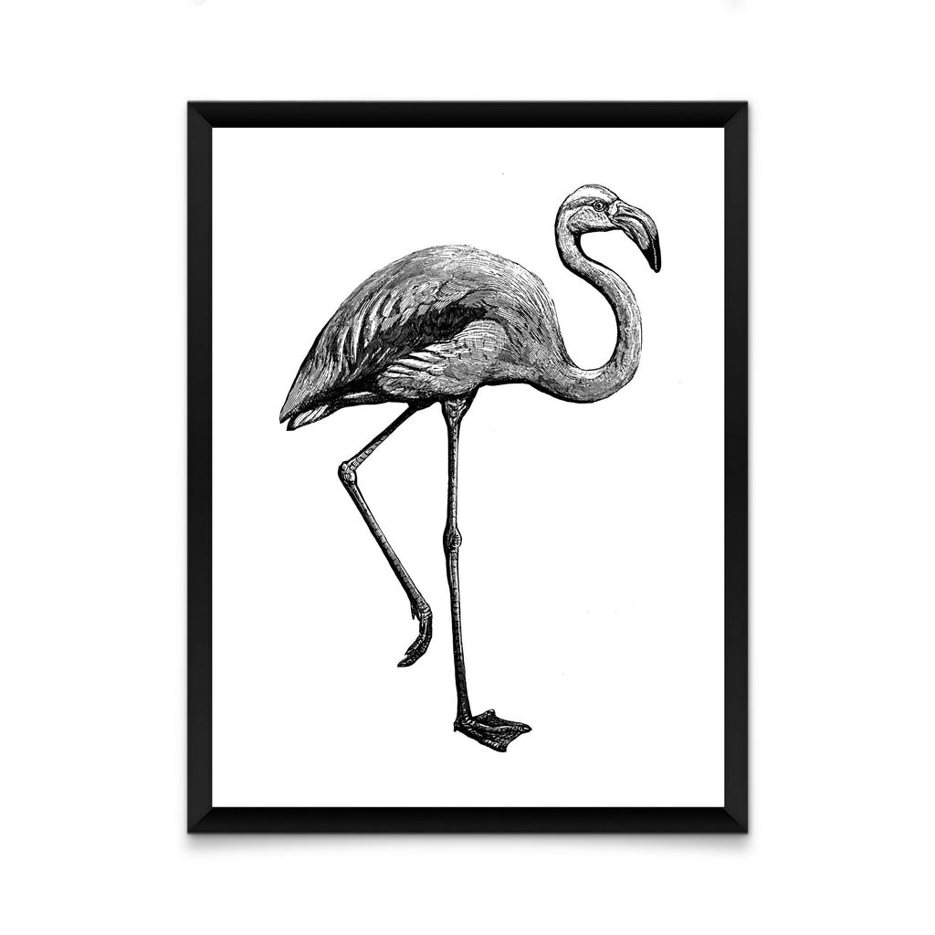 Black and white bird flamingo print/ wall art