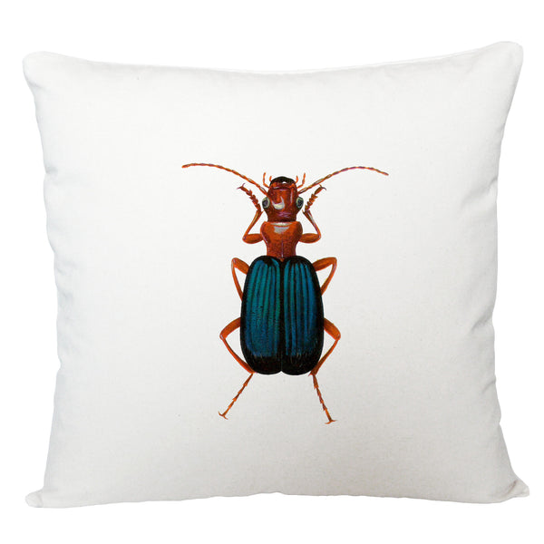 Blue beetle cushion cover