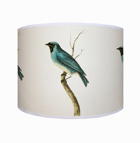 Blue bird shade