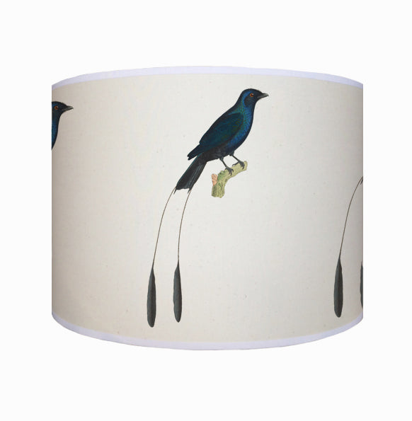 Tropical blue bird shade