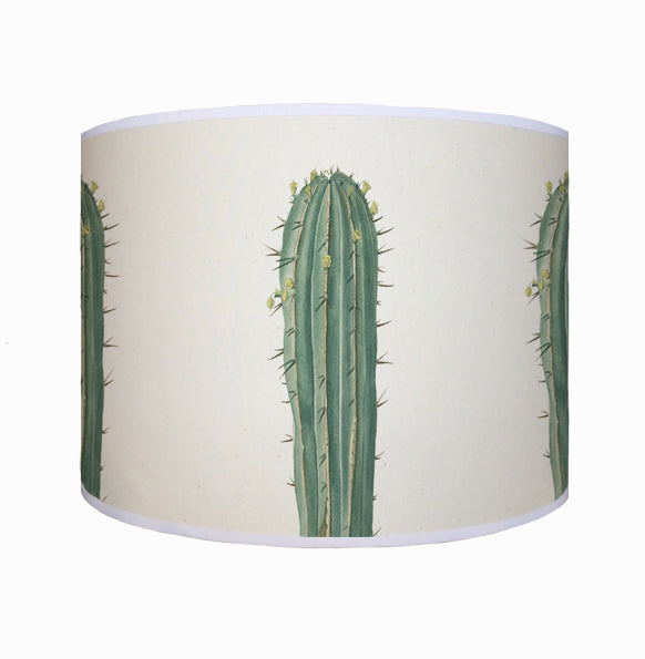 Long cactus shade