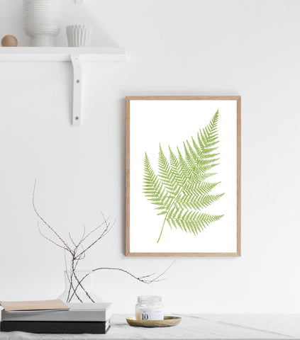 Fern print/ wall art