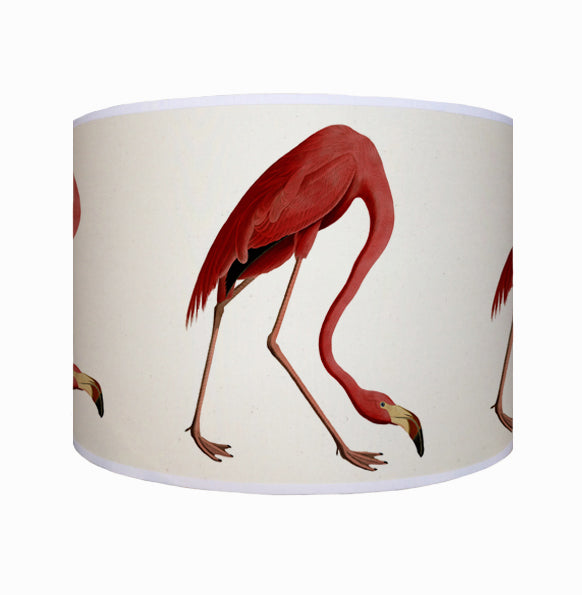 Flamingo shade