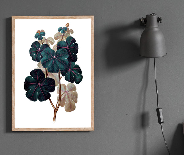 Botanical print/ wall art