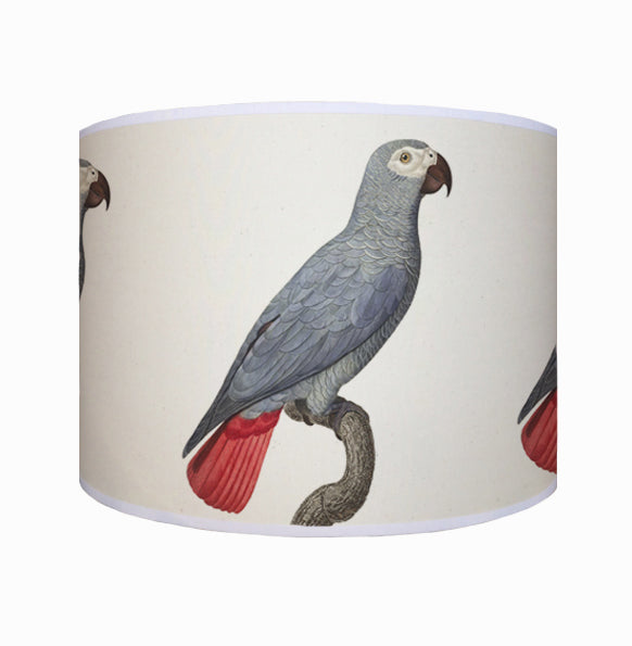 Blue parrot shade