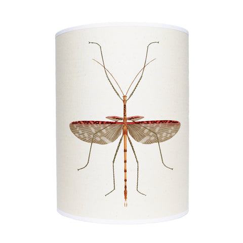 Insect lamp shade/ ceiling pendant
