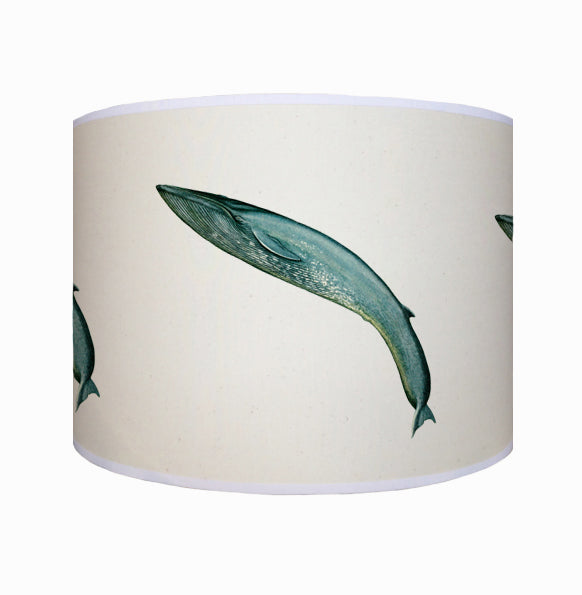 Leaping blue whale shade