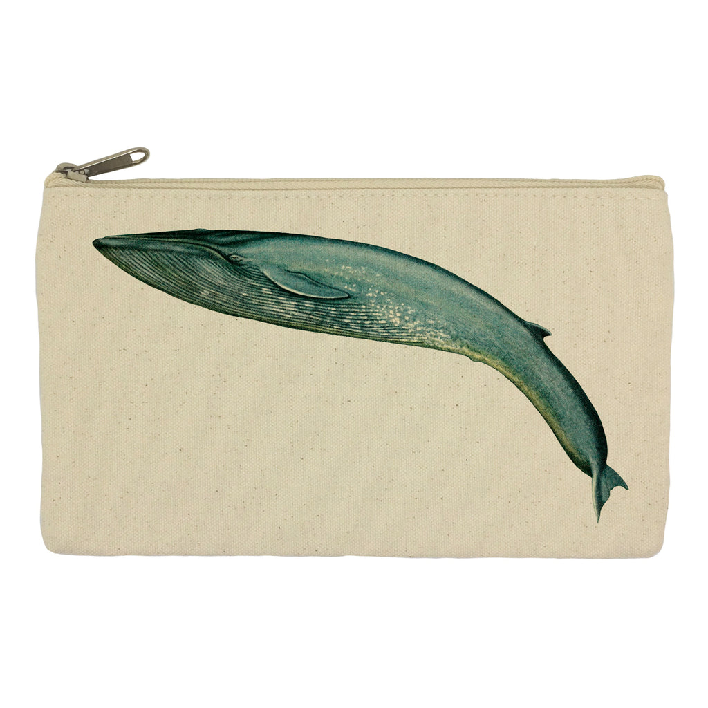 Leaping blue whale pencil case