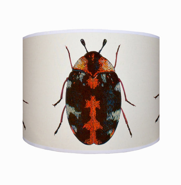 Red beetle shade