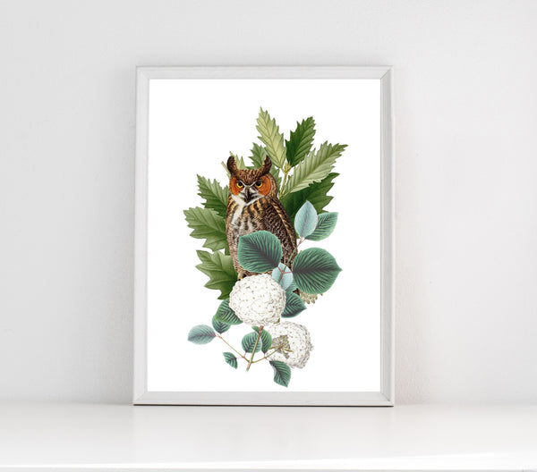 Owl in the plants print/ wall art