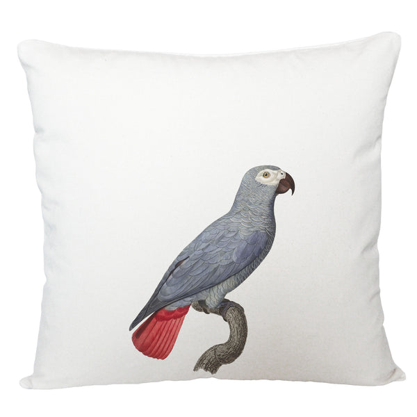 Grey parrot cushion cover