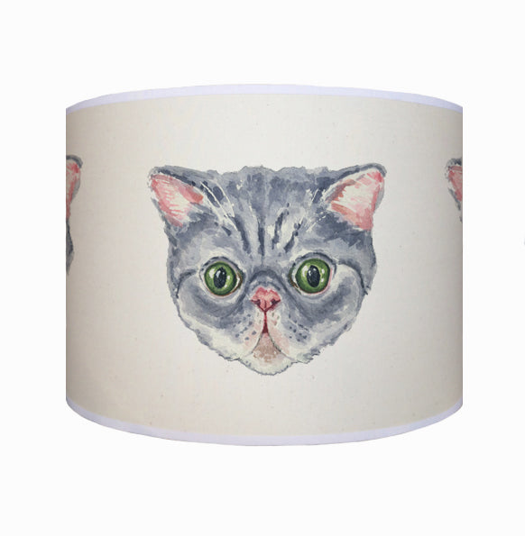 Persian cat shade