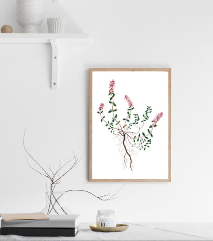 Flower and roots print/ wall art