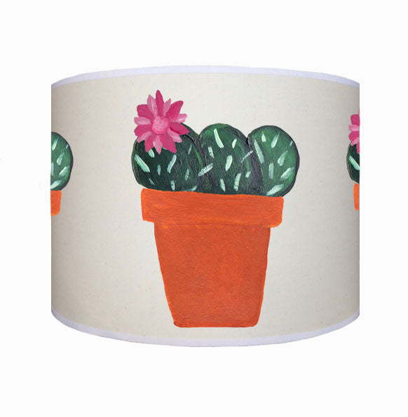 Pink flower cactus shade